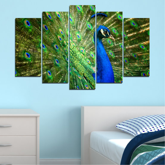 Canvas prints & wall decorative panels - 5 pieces №0159 » Blue, Green, Brown, Black » Birds, Peacock, Feather Form #1