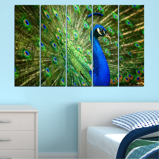 Canvas prints & wall decorative panels - 5 pieces №0159 » Blue, Green, Brown, Black » Birds, Peacock, Feather Form #2