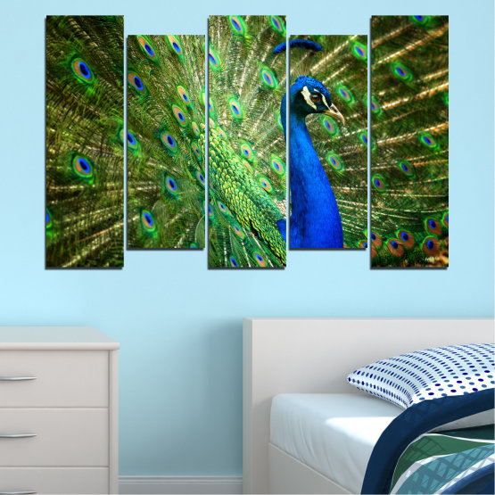 Canvas prints & wall decorative panels - 5 pieces №0159 » Blue, Green, Brown, Black » Birds, Peacock, Feather Form #3