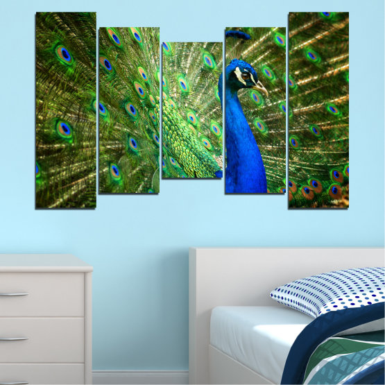 Canvas prints & wall decorative panels - 5 pieces №0159 » Blue, Green, Brown, Black » Birds, Peacock, Feather Form #4