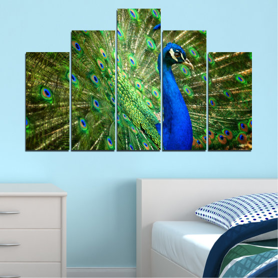Canvas prints & wall decorative panels - 5 pieces №0159 » Blue, Green, Brown, Black » Birds, Peacock, Feather Form #5