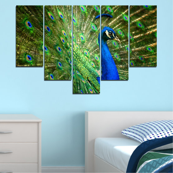 Canvas prints & wall decorative panels - 5 pieces №0159 » Blue, Green, Brown, Black » Birds, Peacock, Feather Form #6