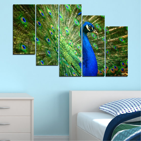 Canvas prints & wall decorative panels - 5 pieces №0159 » Blue, Green, Brown, Black » Birds, Peacock, Feather Form #7