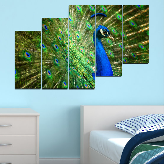Canvas prints & wall decorative panels - 5 pieces №0159 » Blue, Green, Brown, Black » Birds, Peacock, Feather Form #8