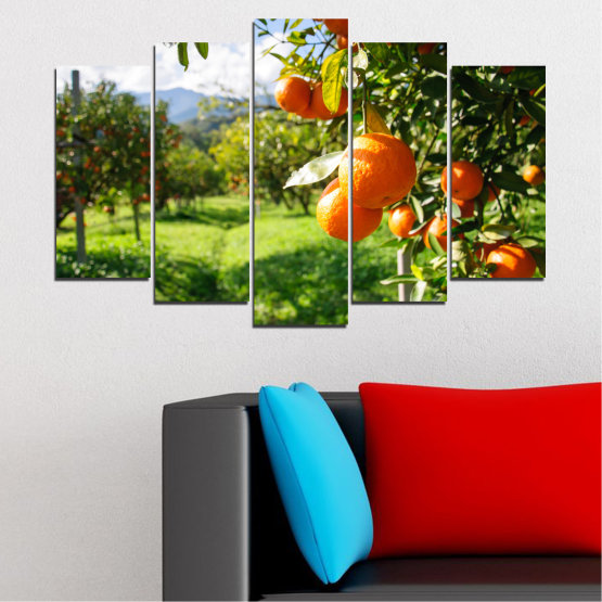 Canvas prints & wall decorative panels - 5 pieces №0161 » Green, Orange, Black, White » Nature, Garden, Fruits Form #1