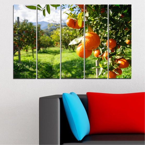 Canvas prints & wall decorative panels - 5 pieces №0161 » Green, Orange, Black, White » Nature, Garden, Fruits Form #2
