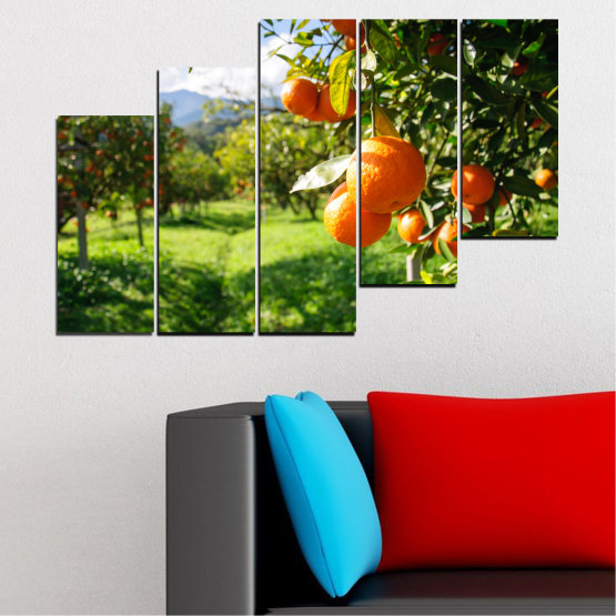 Canvas prints & wall decorative panels - 5 pieces №0161 » Green, Orange, Black, White » Nature, Garden, Fruits Form #8
