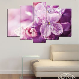 Flowers, Drops, Lilac » Purple, Gray, Milky pink, Dark grey