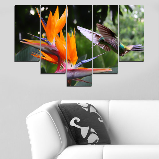 Canvas prints & wall decorative panels - 5 pieces №0176 » Pink, Green, Orange, Brown, Black, Gray, Dark grey » Flowers, Nature, Birds, Hummer Form #6