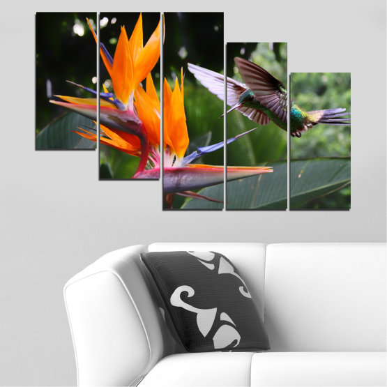 Canvas prints & wall decorative panels - 5 pieces №0176 » Pink, Green, Orange, Brown, Black, Gray, Dark grey » Flowers, Nature, Birds, Hummer Form #7