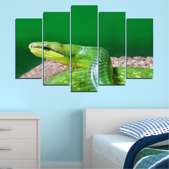 Canvas prints & wall decorative panels - 5 pieces №0178 » Green, Gray, Beige » Animal, Snake, Reptile Form #1