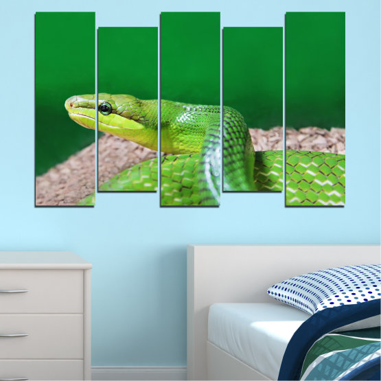 Canvas prints & wall decorative panels - 5 pieces №0178 » Green, Gray, Beige » Animal, Snake, Reptile Form #3