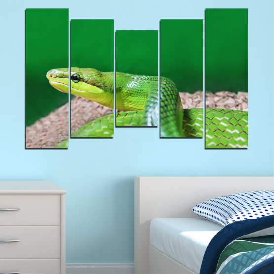 Canvas prints & wall decorative panels - 5 pieces №0178 » Green, Gray, Beige » Animal, Snake, Reptile Form #4