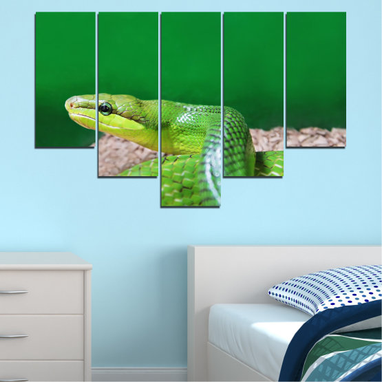 Canvas prints & wall decorative panels - 5 pieces №0178 » Green, Gray, Beige » Animal, Snake, Reptile Form #6