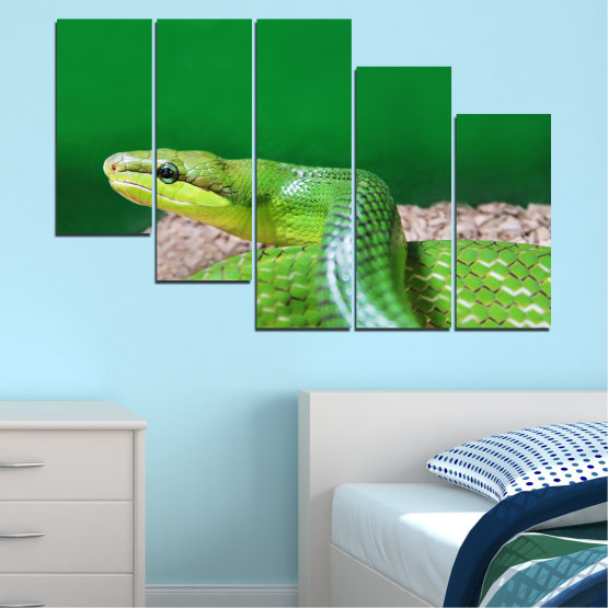 Canvas prints & wall decorative panels - 5 pieces №0178 » Green, Gray, Beige » Animal, Snake, Reptile Form #7