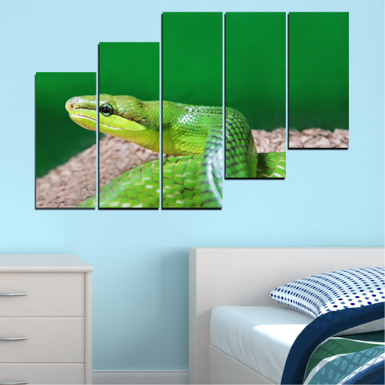 Canvas prints & wall decorative panels - 5 pieces №0178 » Green, Gray, Beige » Animal, Snake, Reptile Form #8