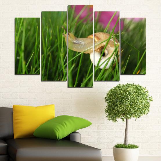 Εκτύπωση σε καμβά και διακοσμητικά πάνελ τοίχου - 5 τεμάχια №0187 » Ροζ, Πράσινος, Καστανός, Μαύρος, Γκρί, Μπεζ, Γαλακτώδες ροζ » Χλωρίδα, Κήπος, Γρασίδι, Σαλιγκάρι Form #1