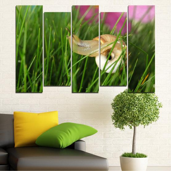 Εκτύπωση σε καμβά και διακοσμητικά πάνελ τοίχου - 5 τεμάχια №0187 » Ροζ, Πράσινος, Καστανός, Μαύρος, Γκρί, Μπεζ, Γαλακτώδες ροζ » Χλωρίδα, Κήπος, Γρασίδι, Σαλιγκάρι Form #3