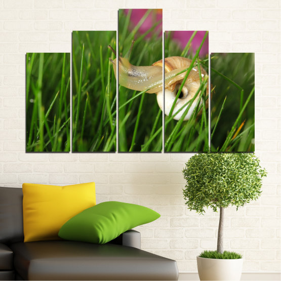Εκτύπωση σε καμβά και διακοσμητικά πάνελ τοίχου - 5 τεμάχια №0187 » Ροζ, Πράσινος, Καστανός, Μαύρος, Γκρί, Μπεζ, Γαλακτώδες ροζ » Χλωρίδα, Κήπος, Γρασίδι, Σαλιγκάρι Form #5