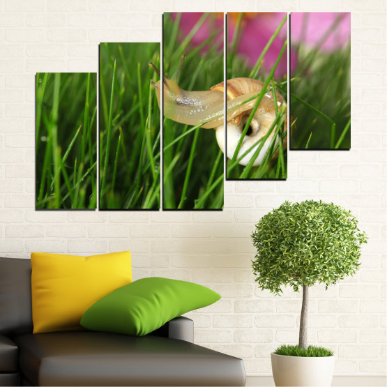 Εκτύπωση σε καμβά και διακοσμητικά πάνελ τοίχου - 5 τεμάχια №0187 » Ροζ, Πράσινος, Καστανός, Μαύρος, Γκρί, Μπεζ, Γαλακτώδες ροζ » Χλωρίδα, Κήπος, Γρασίδι, Σαλιγκάρι Form #8