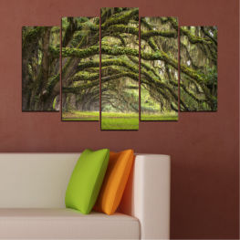 Nature, Tree, Forest » Green, Brown, Black, Dark grey