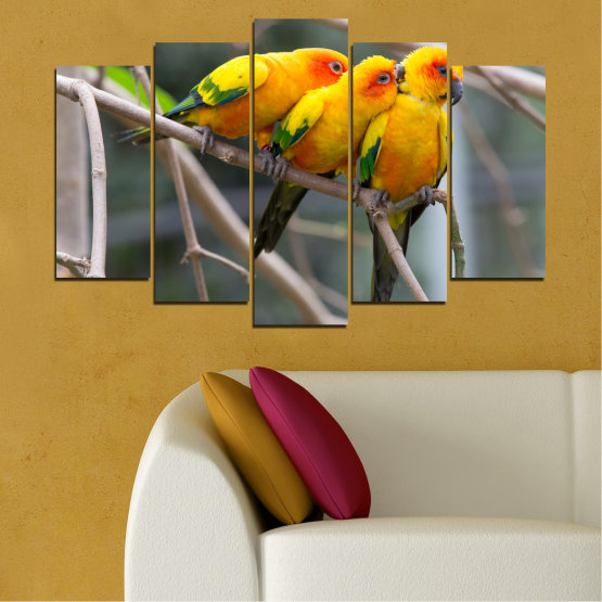 Canvas prints & wall decorative panels - 5 pieces №0193 » Red, Green, Yellow, Orange, Brown, Gray, Beige, Dark grey » Animal, Birds, Parrot Form #1