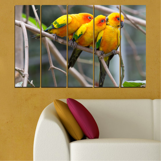 Canvas prints & wall decorative panels - 5 pieces №0193 » Red, Green, Yellow, Orange, Brown, Gray, Beige, Dark grey » Animal, Birds, Parrot Form #2