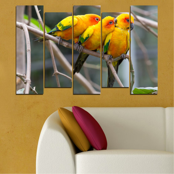 Canvas prints & wall decorative panels - 5 pieces №0193 » Red, Green, Yellow, Orange, Brown, Gray, Beige, Dark grey » Animal, Birds, Parrot Form #3