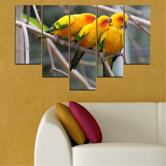 Canvas prints & wall decorative panels - 5 pieces №0193 » Red, Green, Yellow, Orange, Brown, Gray, Beige, Dark grey » Animal, Birds, Parrot Form #6