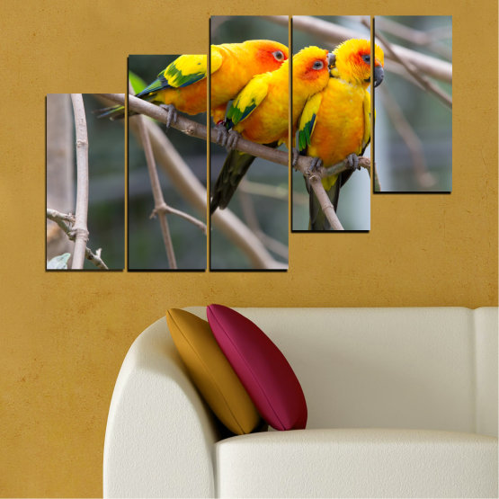 Canvas prints & wall decorative panels - 5 pieces №0193 » Red, Green, Yellow, Orange, Brown, Gray, Beige, Dark grey » Animal, Birds, Parrot Form #8