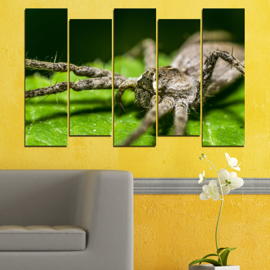 Canvas prints & wall decorative panels - 5 pieces №0200 » Green, Black, Gray, Dark grey » Nature, Animal, Spider Form #3