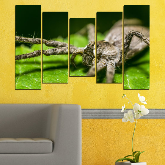 Canvas prints & wall decorative panels - 5 pieces №0200 » Green, Black, Gray, Dark grey » Nature, Animal, Spider Form #4