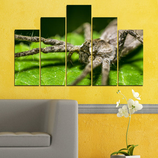 Canvas prints & wall decorative panels - 5 pieces №0200 » Green, Black, Gray, Dark grey » Nature, Animal, Spider Form #5