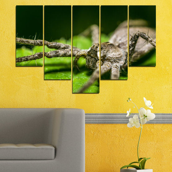 Canvas prints & wall decorative panels - 5 pieces №0200 » Green, Black, Gray, Dark grey » Nature, Animal, Spider Form #6