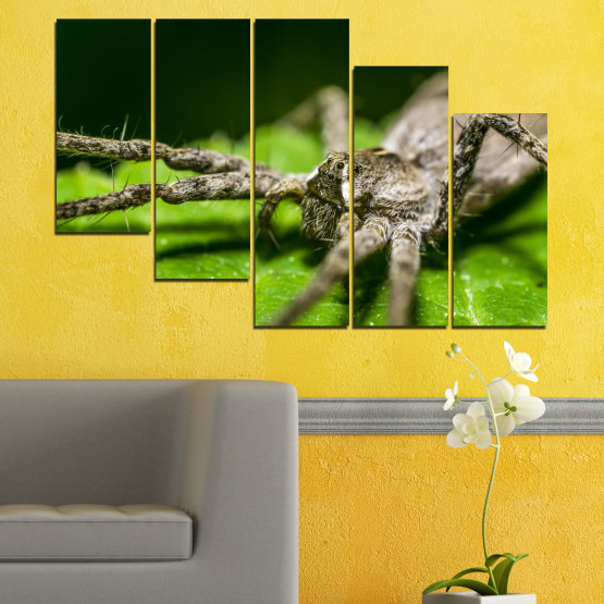 Canvas prints & wall decorative panels - 5 pieces №0200 » Green, Black, Gray, Dark grey » Nature, Animal, Spider Form #7