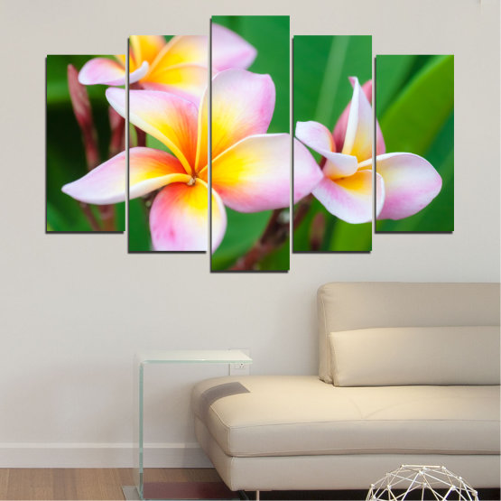 Canvas prints & wall decorative panels - 5 pieces №0201 » Green, Yellow, Brown, Gray, White, Beige, Milky pink » Flowers, Bouquet, Plumeria Form #1