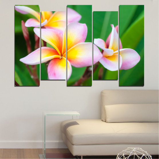 Canvas prints & wall decorative panels - 5 pieces №0201 » Green, Yellow, Brown, Gray, White, Beige, Milky pink » Flowers, Bouquet, Plumeria Form #3