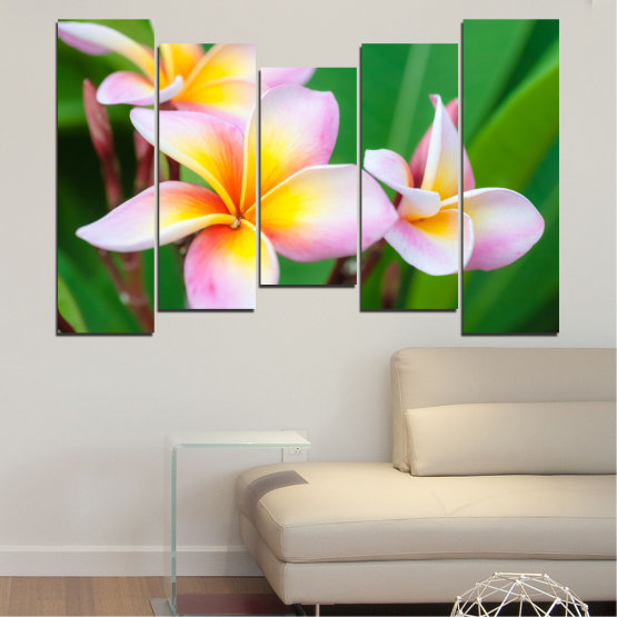 Canvas prints & wall decorative panels - 5 pieces №0201 » Green, Yellow, Brown, Gray, White, Beige, Milky pink » Flowers, Bouquet, Plumeria Form #4