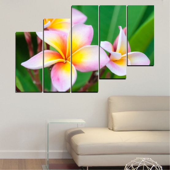 Canvas prints & wall decorative panels - 5 pieces №0201 » Green, Yellow, Brown, Gray, White, Beige, Milky pink » Flowers, Bouquet, Plumeria Form #8