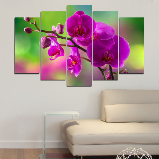 Canvas prints & wall decorative panels - 5 pieces №0202 » Pink, Purple, Green, Gray, Dark grey » Flowers, Orchid, Bouquet Form #1