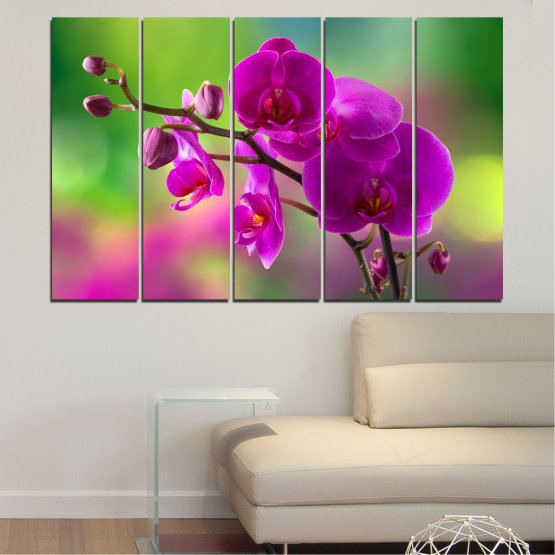 Canvas prints & wall decorative panels - 5 pieces №0202 » Pink, Purple, Green, Gray, Dark grey » Flowers, Orchid, Bouquet Form #2