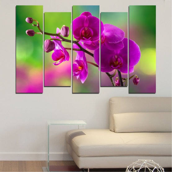 Canvas prints & wall decorative panels - 5 pieces №0202 » Pink, Purple, Green, Gray, Dark grey » Flowers, Orchid, Bouquet Form #3