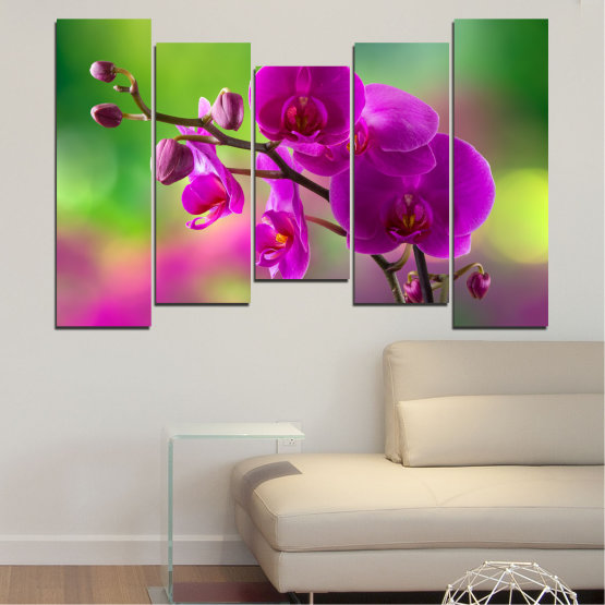 Canvas prints & wall decorative panels - 5 pieces №0202 » Pink, Purple, Green, Gray, Dark grey » Flowers, Orchid, Bouquet Form #4