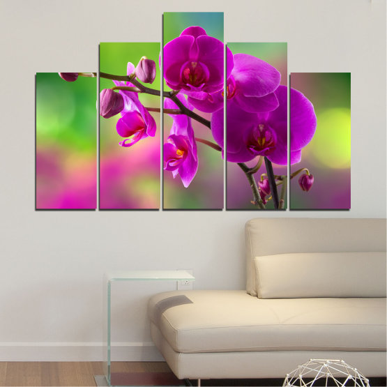 Canvas prints & wall decorative panels - 5 pieces №0202 » Pink, Purple, Green, Gray, Dark grey » Flowers, Orchid, Bouquet Form #5