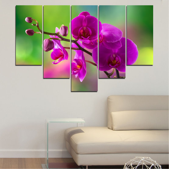 Canvas prints & wall decorative panels - 5 pieces №0202 » Pink, Purple, Green, Gray, Dark grey » Flowers, Orchid, Bouquet Form #6