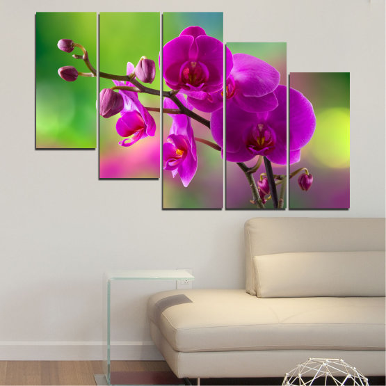 Canvas prints & wall decorative panels - 5 pieces №0202 » Pink, Purple, Green, Gray, Dark grey » Flowers, Orchid, Bouquet Form #7