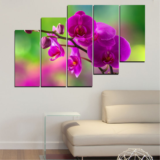 Canvas prints & wall decorative panels - 5 pieces №0202 » Pink, Purple, Green, Gray, Dark grey » Flowers, Orchid, Bouquet Form #8