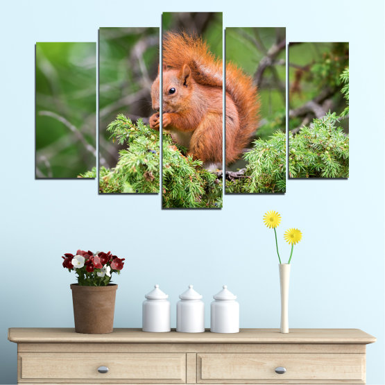 Canvas prints & wall decorative panels - 5 pieces №0205 » Green, Brown, Gray, Dark grey » Animal, Forest, Squirrel Form #1