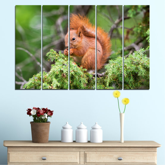 Canvas prints & wall decorative panels - 5 pieces №0205 » Green, Brown, Gray, Dark grey » Animal, Forest, Squirrel Form #2