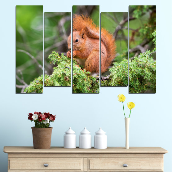 Canvas prints & wall decorative panels - 5 pieces №0205 » Green, Brown, Gray, Dark grey » Animal, Forest, Squirrel Form #3